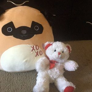 A cute small teddy bear and a kid size dog pillow.